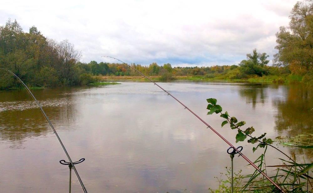 Рыбная ловля в ногинском районе