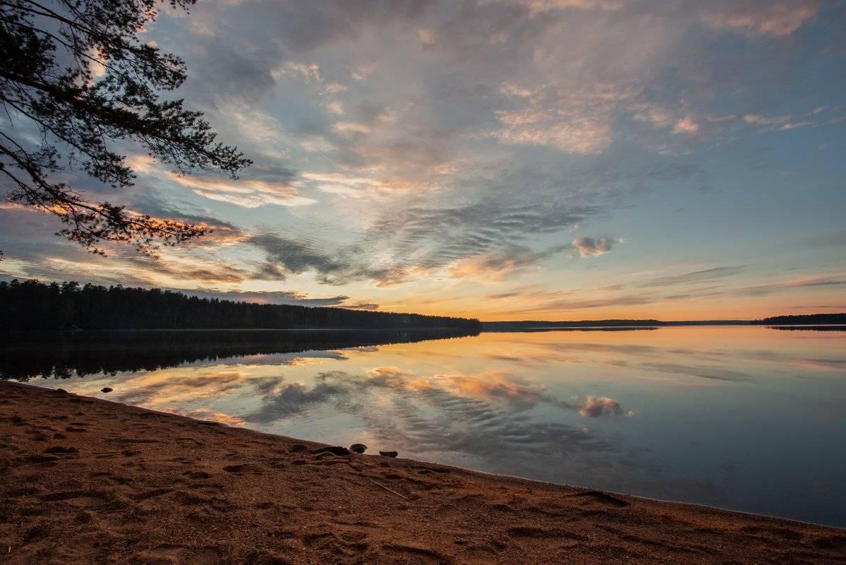 Озеро красавица, ленинградская область. рыбалка, озеро на карте, отдых на озере, фото озера, погода на озере, как добраться — туристер.ру