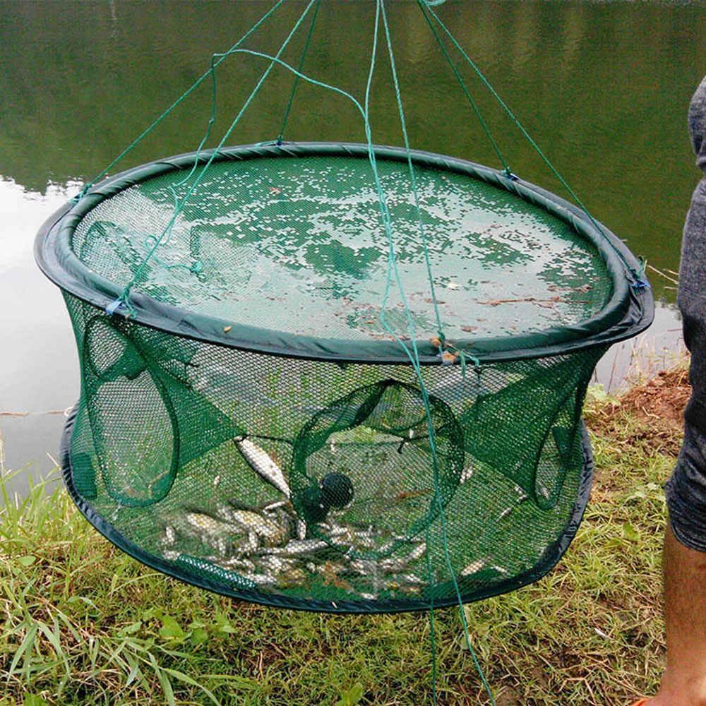 Рыбная ловля: 4 самые эффективные ловушки для рыбы