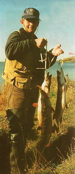 Спиннинг для начинающих: от снастей до тактики ловли