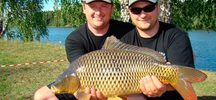 Лучшие рыболовные места челябинской области – рыбалке.нет