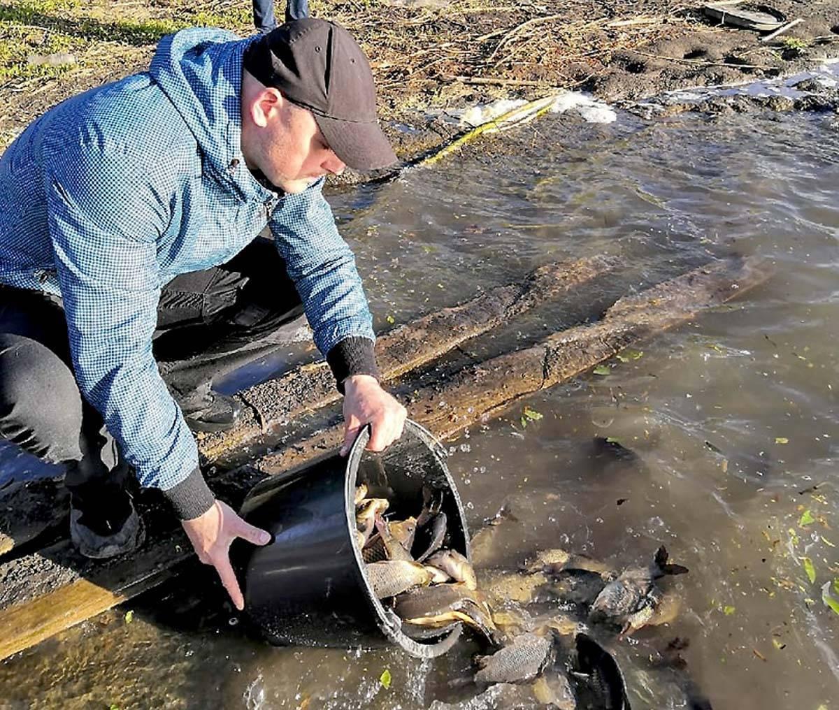 Рыбалка на сиваше ловля судака бычка камбалы в крыму