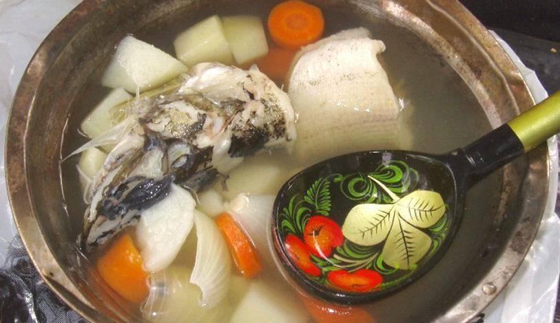 Уха из щуки - пошаговый рецепт с фото    первые блюда