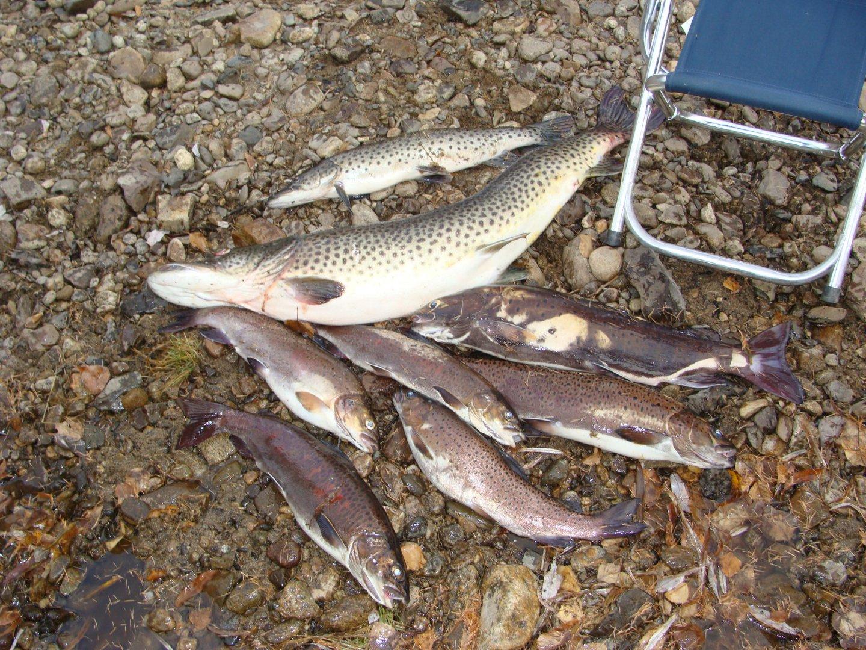 Отдых и рыбалка на озерах красноярского края