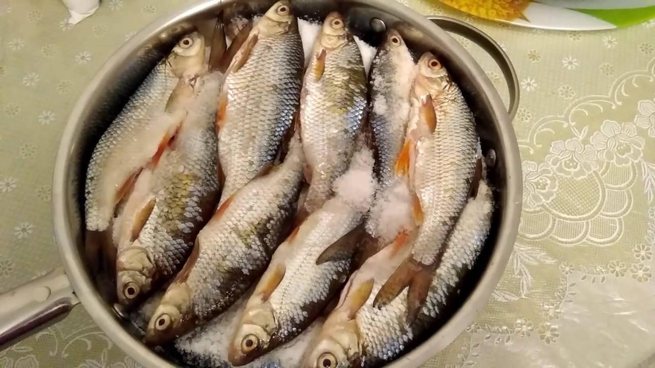 Как засушить рыбу в домашних условиях:процесс,рыба для сушки,места в квартире и доме и как лучше повесить рыбу