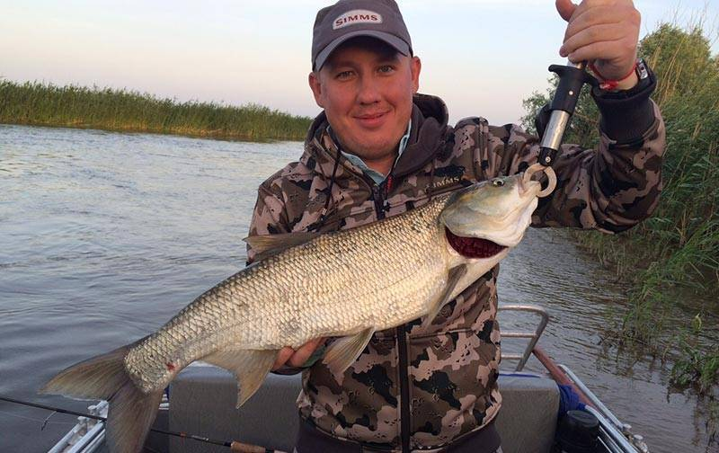 20 лучших баз отдыха астраханской области для рыбалки - рейтинг 2020