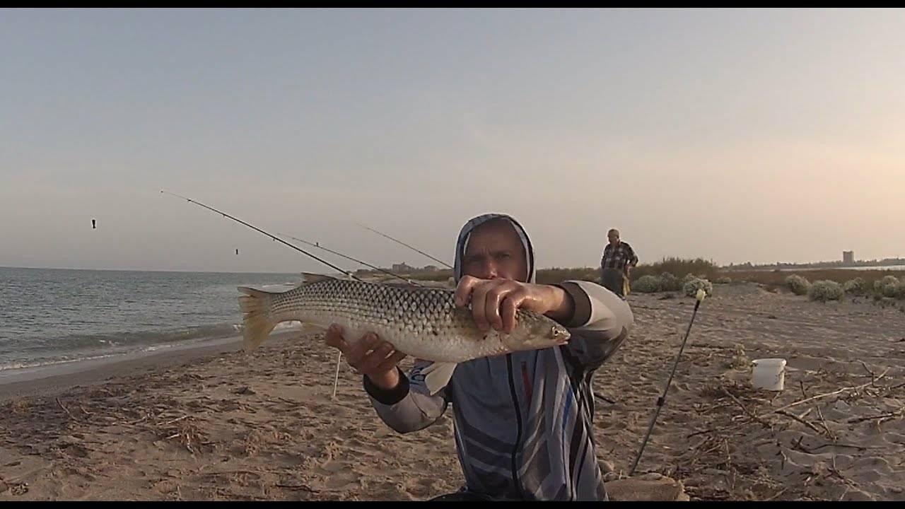 Морская рыбалка в кучугурах: как совместить отдых на курорте с увлекательной рыбалкой