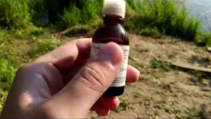 Как приготовить анисовое масло для рыбалки - про рыбалку