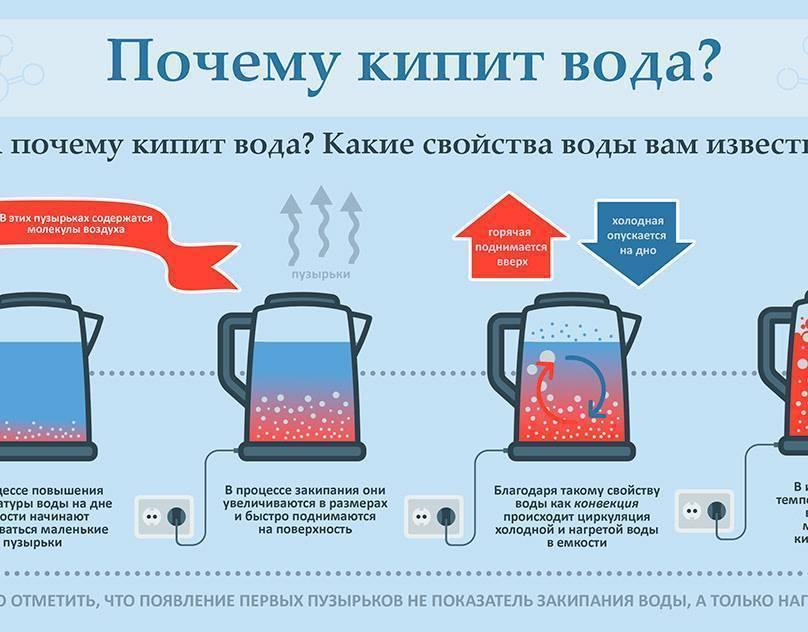 Отвечаем на вопрос — как подготовить воду для аквариума?