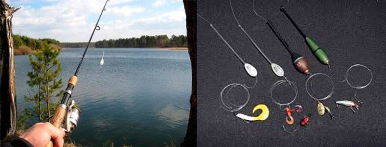 Ловля голавля на спиннинг: всё от подбора снасти до техники ловли