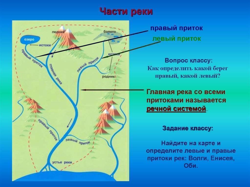 Расположение реки обь на карте: описание, животный и растительный мир, города и объекты