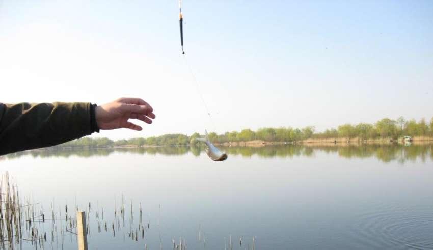 Firstfisher.ru – интернет-журнал о рыбалке и рыболовах. рыбалка на иваньковском водохранилище