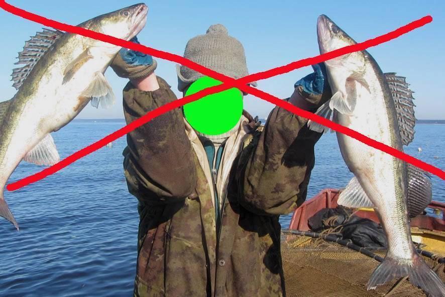 ᐉ байкал озеро - место для рыбака - ✅ ribalka-snasti.ru