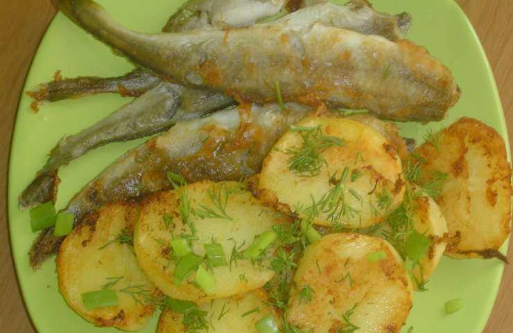 ✅ рыба сайда полезные свойства. сайда: что за рыба и как готовить? тушение как способ сохранить сочность - sundaria.su