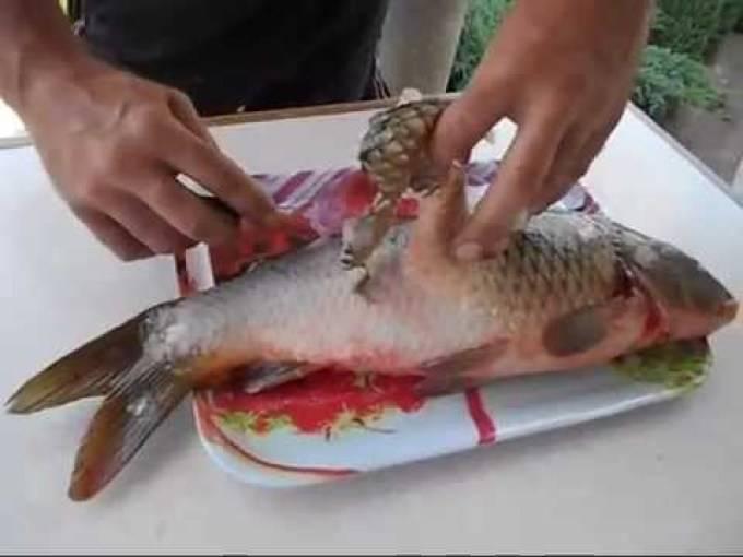 Как правильно и быстро почистить рыбу от чешуи и костей
