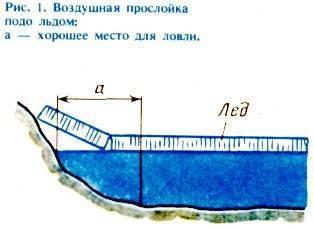 Окунь - ловля окуня в ленинградской области. нерест окуня - базы отдыха