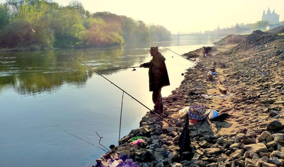 ᐉ смоленское водохранилище - место для рыбака - ✅ ribalka-snasti.ru