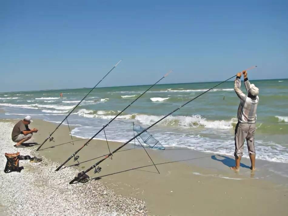 Снасть и наживки на кефаль в черном море с берега и с лодки