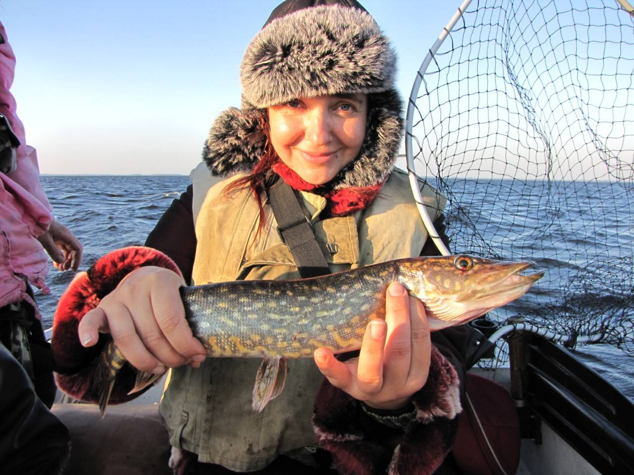 Рыбалка в ладожских шхерах летом — какая рыба водится и где лучший клёв?