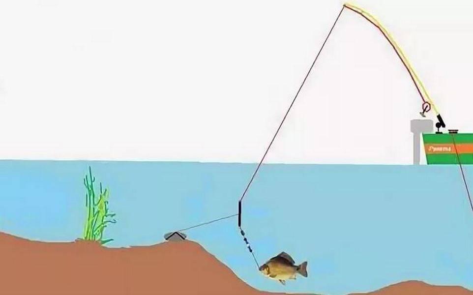 Как ловить на донку правильно с лодки и с берега?