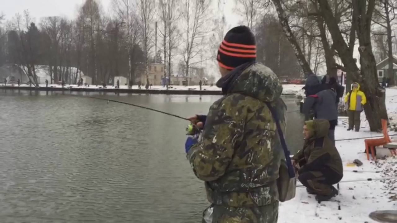 Рыбалка в ольгово (дмитровский район): особенности, видовой состав рыб, техника ловли