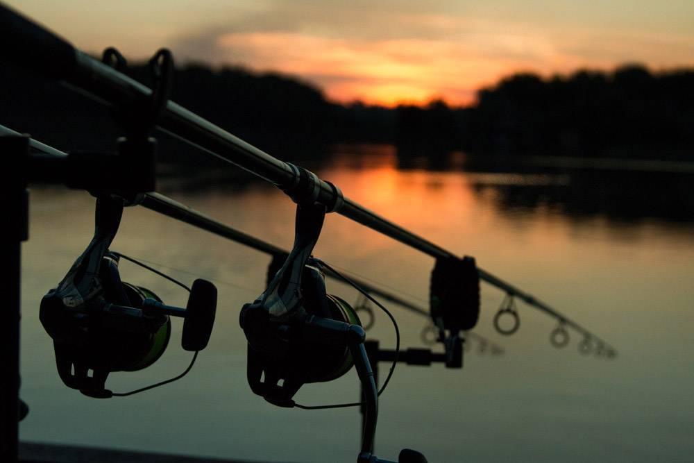 """Ночная рыбалка: о рыбах-""""полуночниках"""" и способах их ловли"""