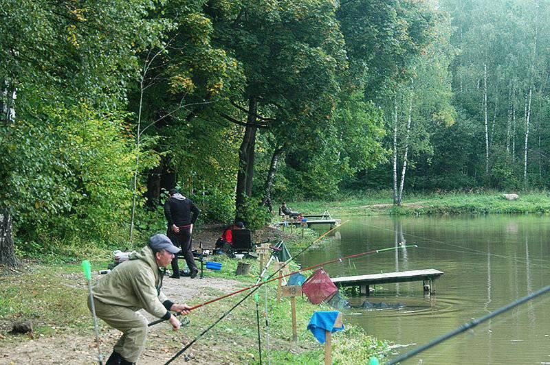 Рыбалка в рыбхозе «клёвое место» на лосином острове