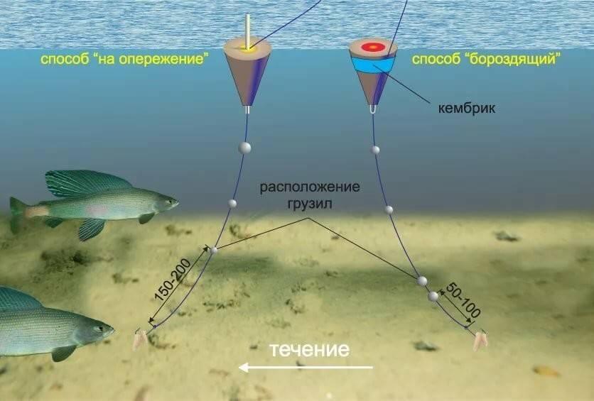 Рыбалка поплавочной удочкой - оснастка и процесс ловли