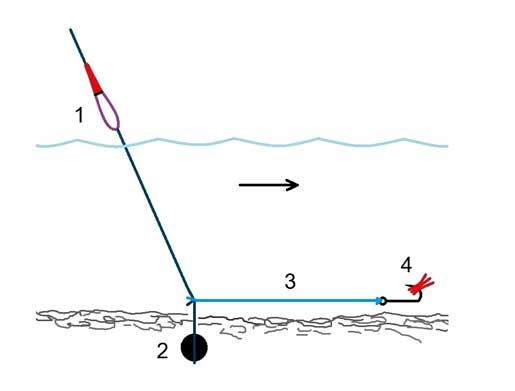 Ловля рыбы на полудонку