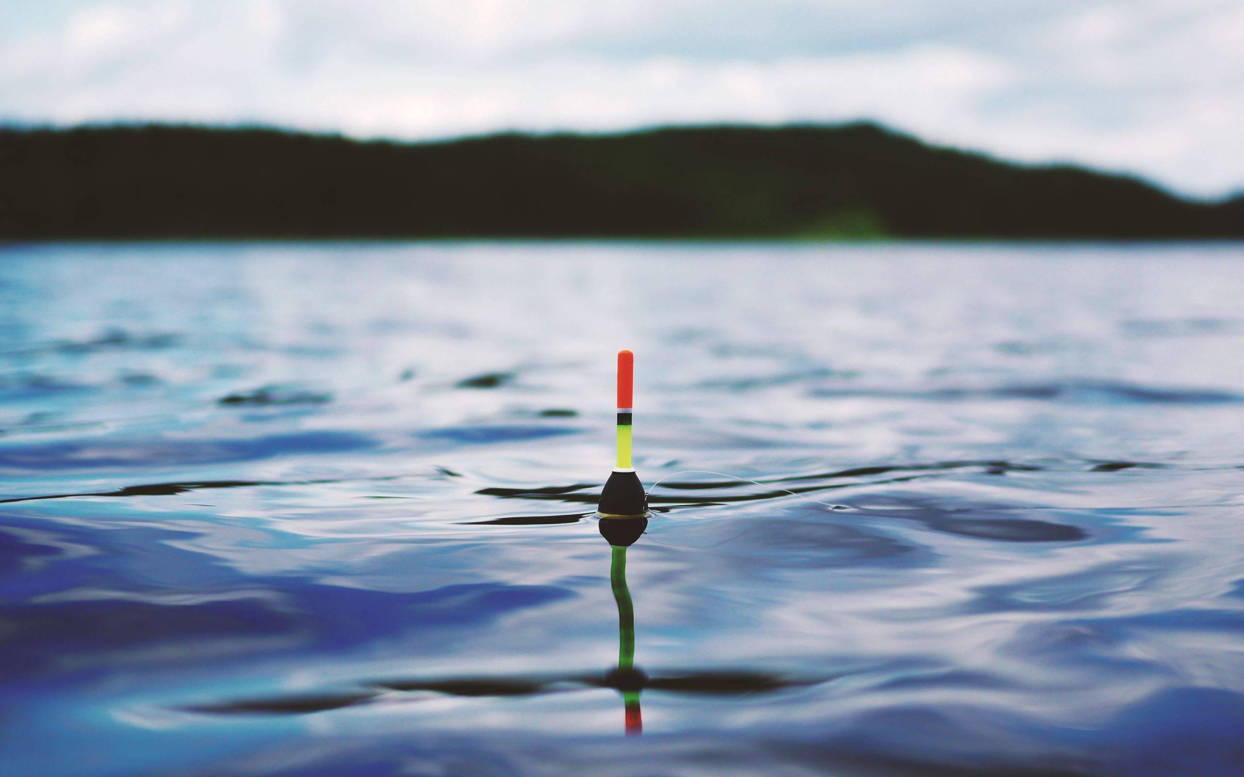 Ловля на поплавочные удочки: 85 фото подготовки и секретов современной рыбалки