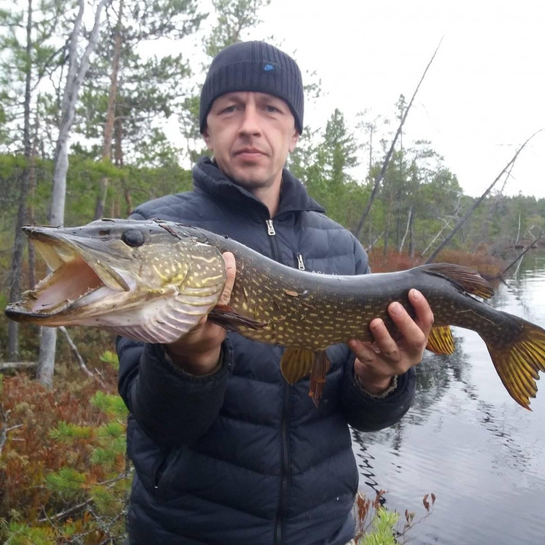 ᐉ песчаное озеро (томская область) - место для рыбака - ✅ ribalka-snasti.ru