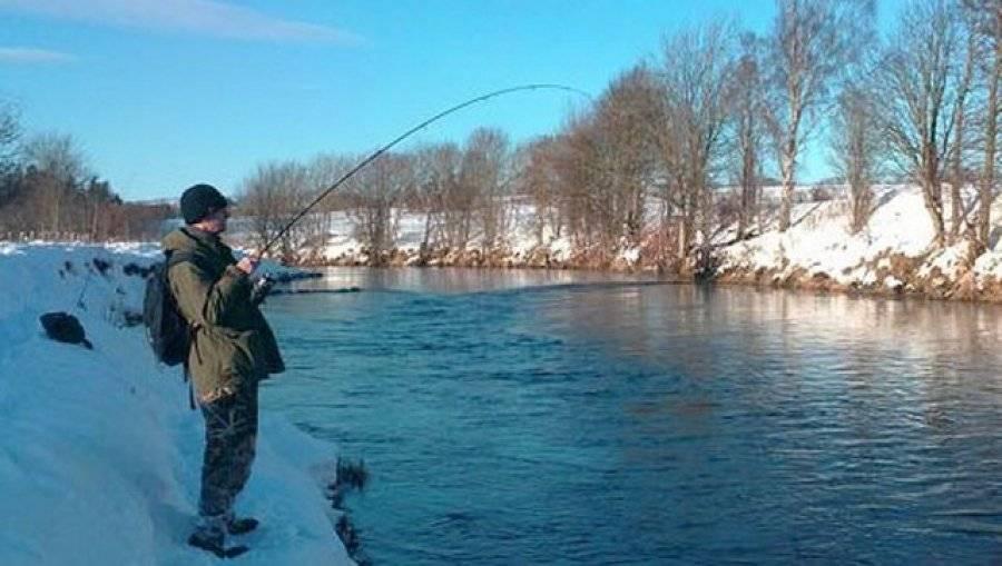 Рыбалка в феврале: какая рыба ловится и где ее искать