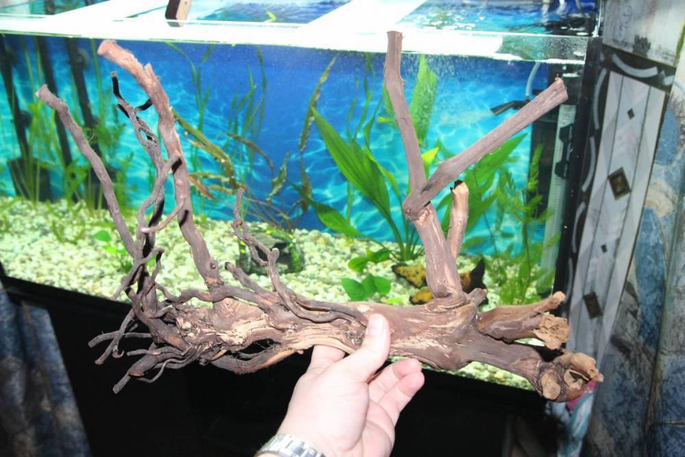Как обработать коряги для аквариума своими руками