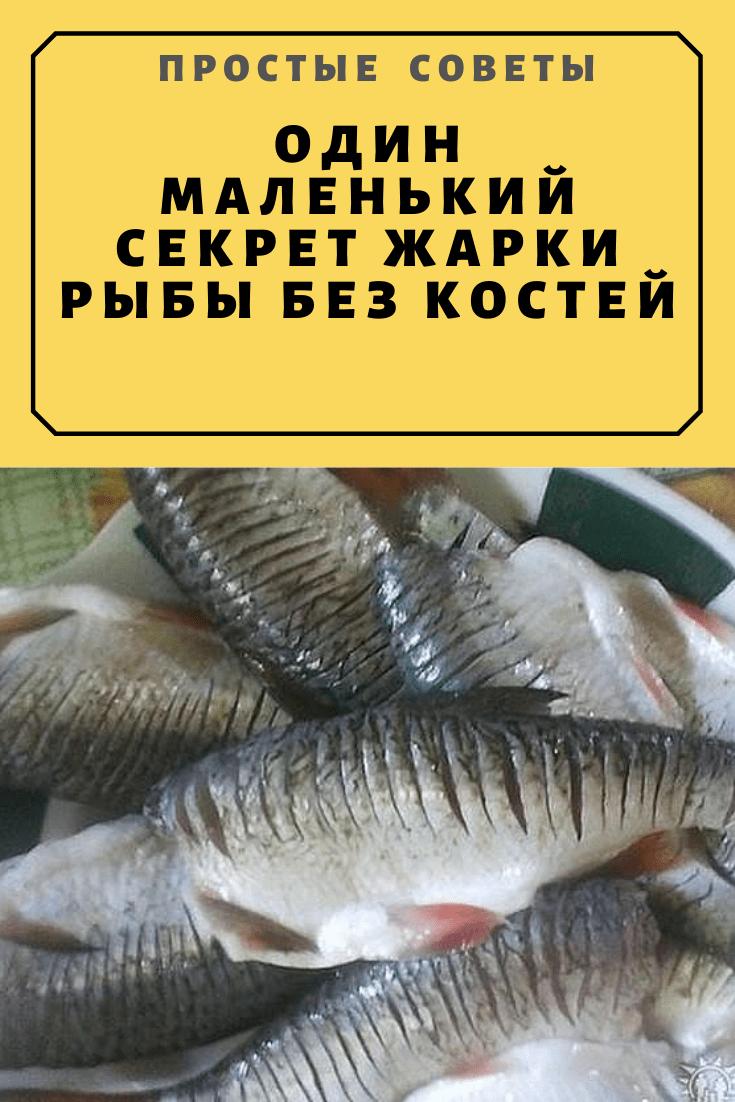 Топ 10 самых вкусных рыб