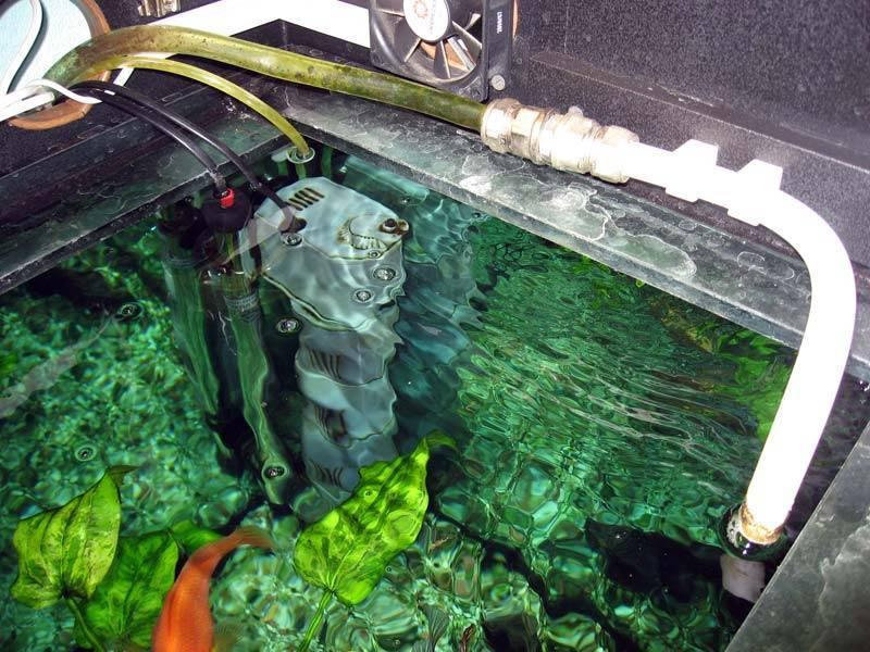 Вода для аквариума и всё о ней