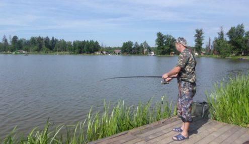 Рыбалка на волге: базы и ловля дикарем в нижней и верхней части