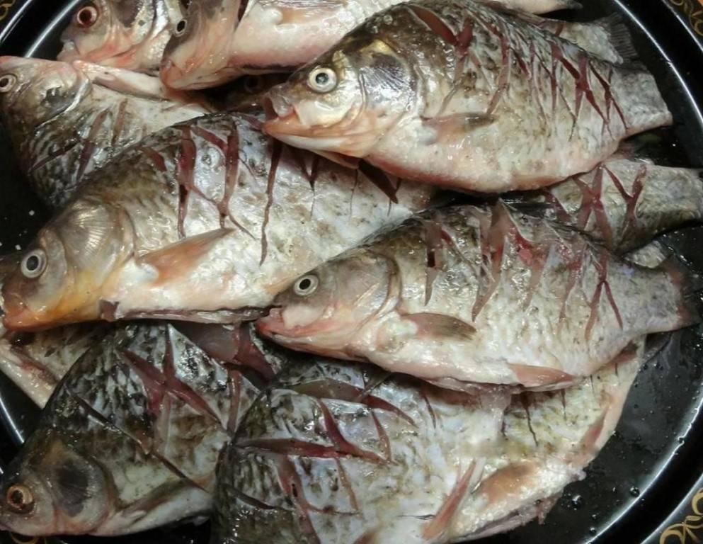 Шашлык из рыбы: какую рыбу лучше выбрать, чтобы жарить на мангале