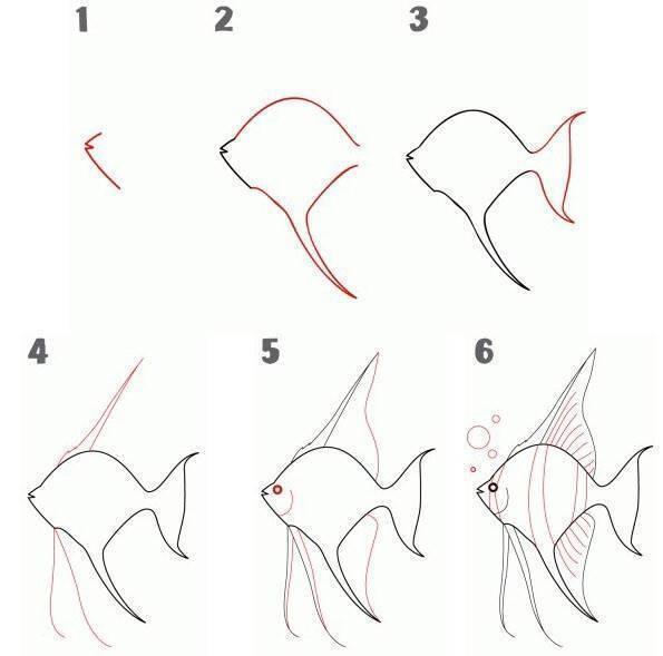 Как рисовать золотую рыбку поэтапно для витража. как нарисовать золотых рыбок поэтапно с фото
