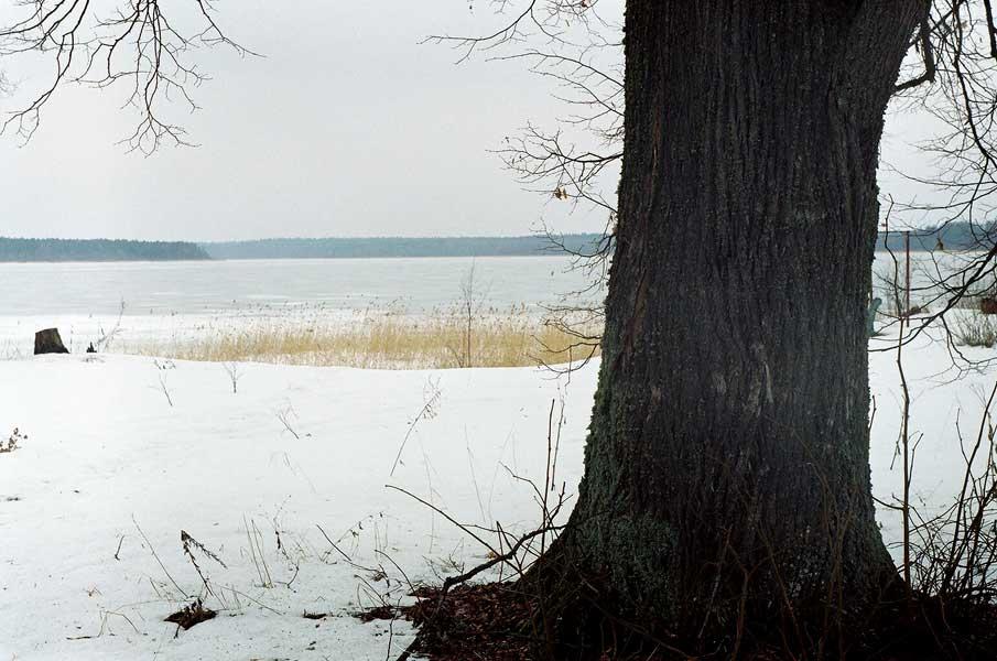 Озеро череменецкое лужский район рыбалка