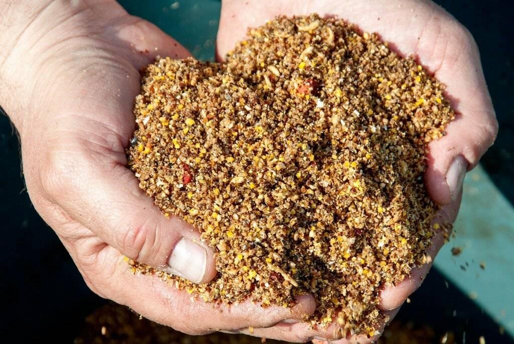 Прикормка для сазана летом: рецепты, приготовление своими руками в домашних условиях