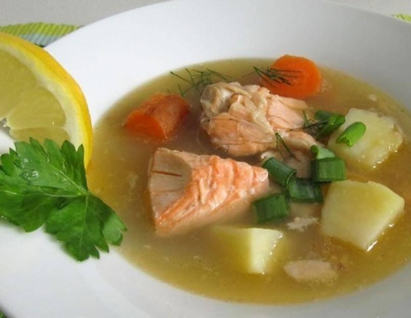 Как приготовить суп и уху из форели: рецепт классический, из головы и хвоста, со сливками и с крупами