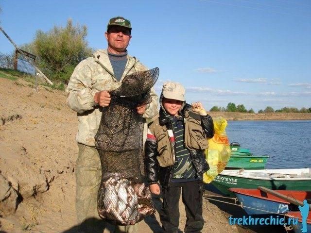 Рыбалка в трехречье летом: ахтубинский сазан на жмых (макуху)