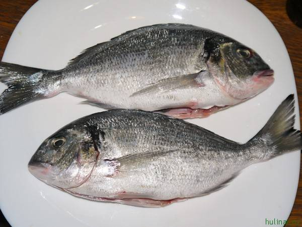 Рыба простипома: описание, среда обитания и вкус
