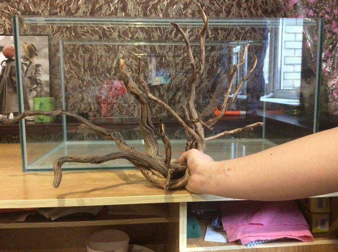 Коряга для аквариума своими руками: какая древесина лучше