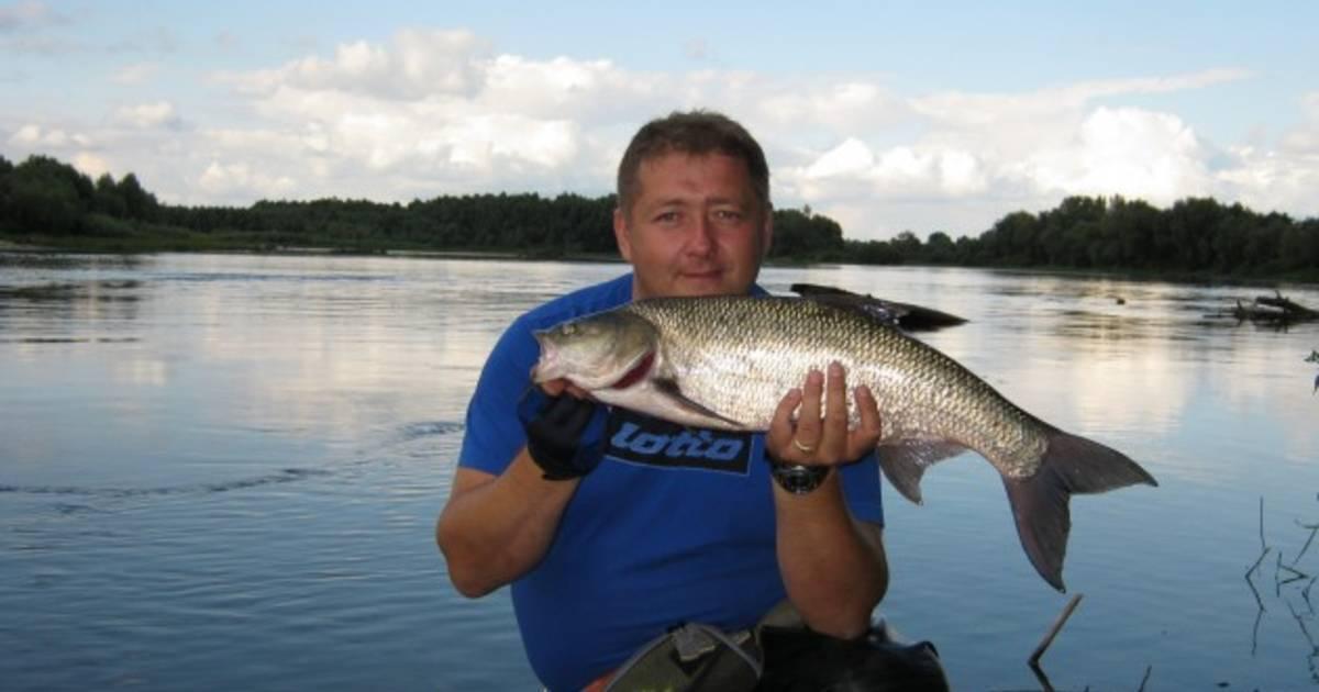 Брянск - календарь рыболова. рыбалка в брянске, график клёва рыбы.