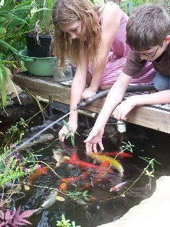 Пруд для разведения рыбы ⛲ своими руками - как сделать на даче?