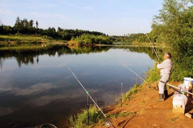 Рыбалка в Одинцовском районе