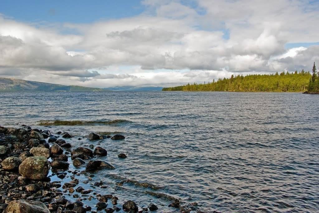 Рыбалка на торбеевском озере » отдых на природе. места, статьи, события.