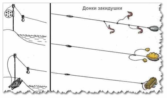 Донка на щуку: закидушка своими руками, оснастка для ловли с берега. как сделать из спиннинга? монтаж донной снасти