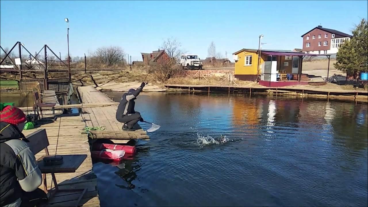 """""""клевое место"""" - платная рыбалка на лосином острове в подмосковье"""